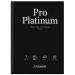 Fotopapper Pro Platinum A3  20 ark 300g (PT-101)